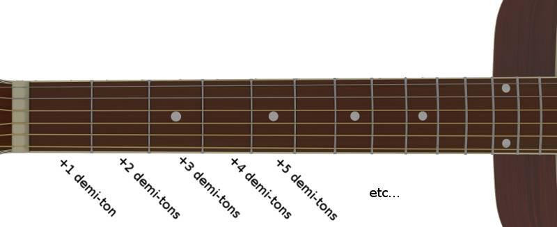 demi-tons et cases du manche de la guitare